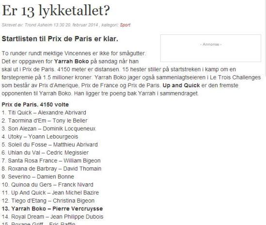 Hjemmeside1