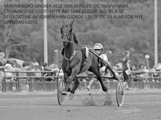 Yarrah Boko på Jarlsberg med  Kai Johansen (Foto Marion Klette) sorthvitt copy